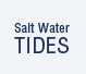 Tides (Provided by saltwatertides.com)